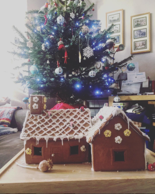 Homemade Ginger bread house from IKEA!